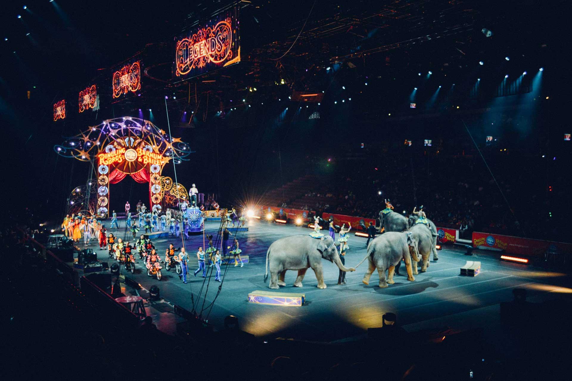 Image du défilé des artistes dans un cirque